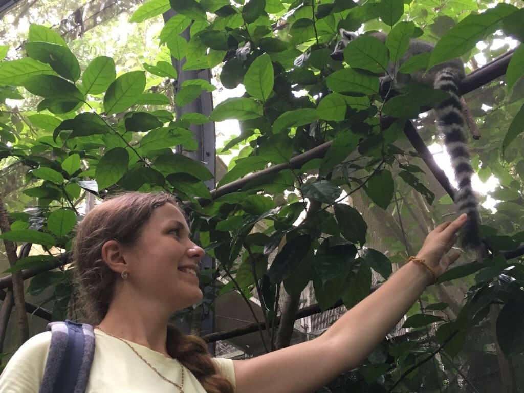 Самостоятельная поездка в Сингапур: интересные места и встреча с голливудскими звёздами_103