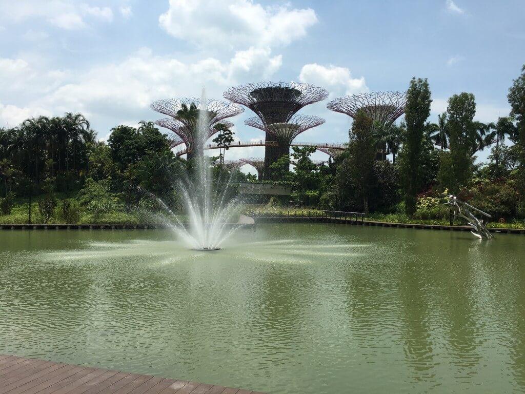 Самостоятельная поездка в Сингапур: интересные места и встреча с голливудскими звёздами_153