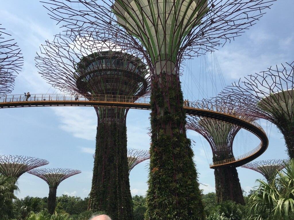 Самостоятельная поездка в Сингапур: интересные места и встреча с голливудскими звёздами_155