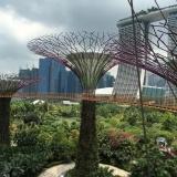 Самостоятельная поездка в Сингапур: интересные места и встреча с голливудскими звёздами