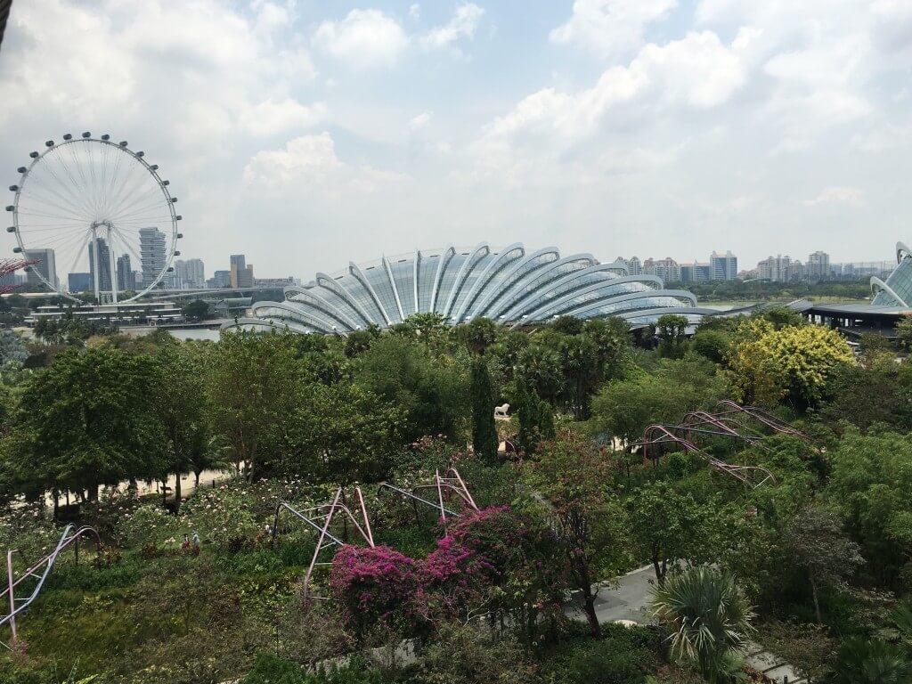 Самостоятельная поездка в Сингапур: интересные места и встреча с голливудскими звёздами_156