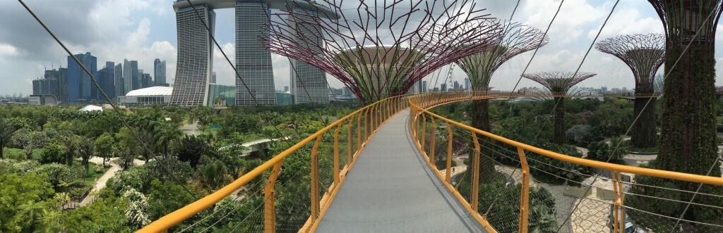 Самостоятельная поездка в Сингапур: интересные места и встреча с голливудскими звёздами_159