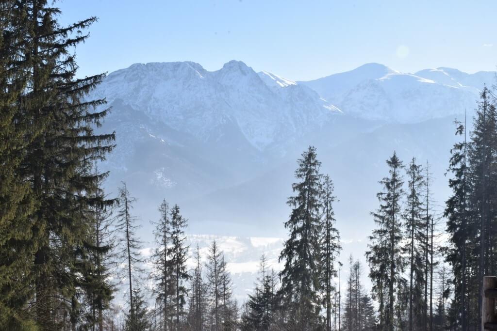 Гора Губалувка в Закопане: завораживающие красоты и восстановление сил_08